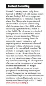 Cantwell Consulting Business Ireland Piece